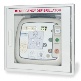 ME PAD Wall cabinet with Alarm
